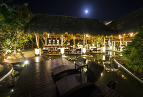 jungle beach resort blue moon