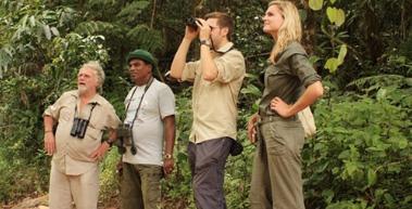 Sinharaja-Rainforest